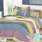 雙人床罩 / 兩用被四件組 (戀戀風情) 含兩件鋪棉枕套 活性絲柔棉 好夢寢具台灣製