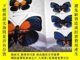 二手書博民逛書店What罕見is the most beautiful Butterfly in the world : Illu
