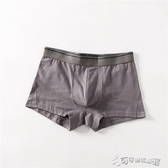 內褲 內褲男3條裝純棉日透氣柔軟平角褲頭中腰四角 Cocoa