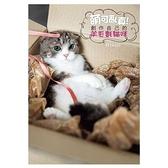 萌可亂真創作自己的羊毛氈貓咪