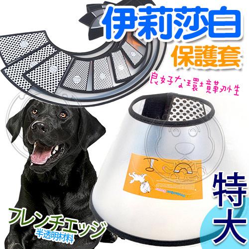 【培菓幸福寵物專營店】DYY》伊莉莎白《防咬》寵物防護保護套 (特大號-51-60CM)