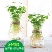 簡約透明玻璃花瓶水培銅錢草花盆水養綠蘿植物風信子插花瓶小清新 名購居家