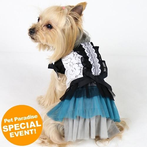 【PET PARADISE 寵物精品】Pretty Boutique 黑綠色晚宴風蕾絲洋裝 (SS/DS) 寵物用品 寵物衣服《SALE》