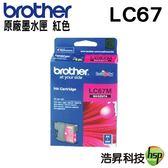 Brother LC67 M 原廠墨水匣 盒裝 適用於290C/490CW/790CW/6490CW/795CW