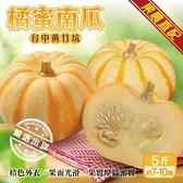 【果農直配-全省免運】橘蜜南瓜【5斤/7-10粒】