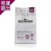 Blackwood柏萊富 功能性全齡腸胃保健(鮭肉+米) 犬糧 5磅 X 1包【免運直出】