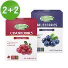 Frenature富紐翠-翠鮮果凍乾 4盒組(蔓越莓+藍莓)