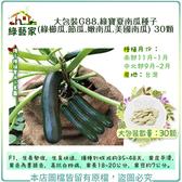 【綠藝家】大包裝G88.綠寶夏南瓜種子(綠櫛瓜.節瓜.嫩南瓜.美國南瓜) 30顆
