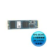 Pioneer 先鋒 APS-SE20G-1TB固態硬碟(M.2 PCIE)(五年保)