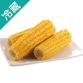 台灣金黃甜玉米1包(200g±5%/包)【愛買冷藏】