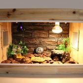 爬蟲飼養箱陸龜箱蜥蜴爬蟲杉木箱