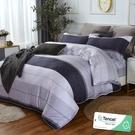 加大 182x188cm 特頂100%天絲 60s500針紗 床包四件組(兩用被套)-切希爾【金大器】