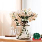 大號北歐水培家居干花裝飾花瓶擺件客廳插花玻璃瓶【福喜行】