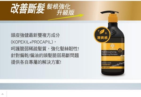 《台塑生醫》Dr's Formula髮根強化洗髮精-清爽感(升級版)580g*3入
