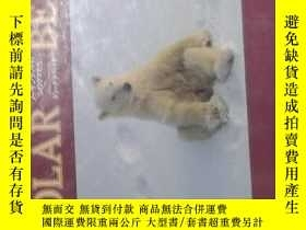 二手書博民逛書店日語原版罕見Polar BearY14063