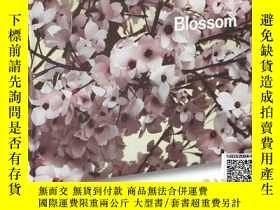 二手書博民逛書店【罕見】Thomas Demand: Blossom 2015Y