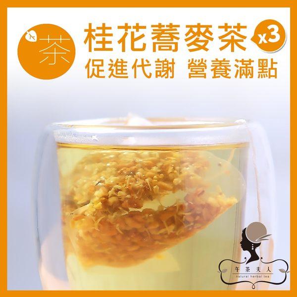 午茶夫人 桂花蕎麥茶 10入/袋x3 花茶/花草茶/茶包/無咖啡因/養生茶