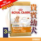 BHN皇家PRPJ33貴賓幼犬飼料 3kg【寶羅寵品】