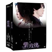 紫玫瑰DVD (全13集)