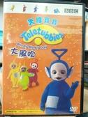 挖寶二手片-B53-正版DVD-動畫【天線寶寶:大風吹】-國英語發音(直購價)