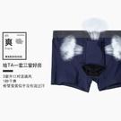 -四角褲-槍彈分離內褲 大象純棉男生內褲CET_AD321