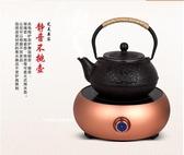 110V220V伏出國美國日本加拿大養生電熱水壺自動上水電磁爐電茶壺