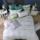 鴻宇 雙人加大床包兩用被套組 天絲300織 莎漫 台灣製 T20107