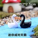 魚缸造景裝飾擺件微景觀多肉裝飾品可愛迷你DIY標簽小擺件(黑白天鵝一對2只)─預購CH1041