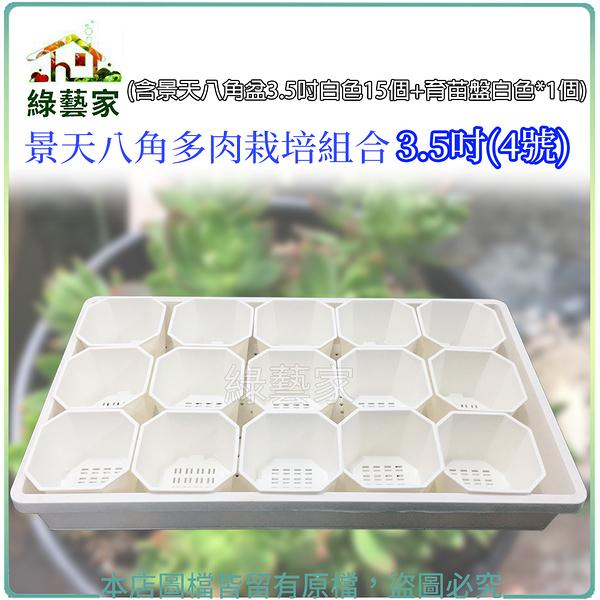 【綠藝家】景天八角多肉栽培組合3.5吋(4號)(含景天八角盆3.5吋白色15個+育苗盤白色*1個)