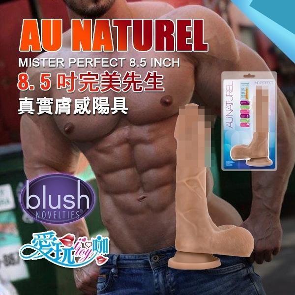 美國 BLUSH NOVELTIES 8.5吋完美先生 真實膚感陽具 AU NATUREL MISTER PERFECT DILDO 最接近真人擬真陽具