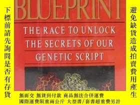 二手書博民逛書店The罕見Human Blueprint : The Race
