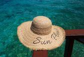 拉菲草帽子女夏季字母遮陽帽防曬帽沙灘帽子女式夏季海邊度假帽子gogo購