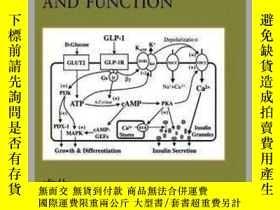 二手書博民逛書店Molecular罕見Basis of Pancreas Development and Function-胰腺發