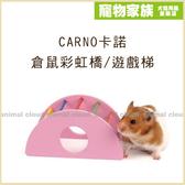 寵物家族*-CARNO卡諾 倉鼠彩虹橋/遊戲梯
