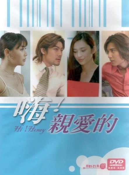 嗨!親愛的 DVD 全21集  (購潮8)
