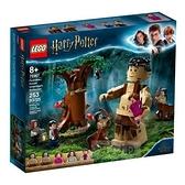 【南紡購物中心】【LEGO樂高積木】哈利波特系列 - 禁忌森林75967