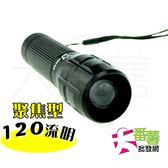 聚焦型TL 005 閃電手電筒LED 手電筒19D1 大番薯 網
