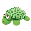 CHICCO義大利神奇感溫烏龜洗澡玩具~1個