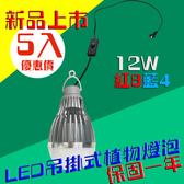LED植物燈 吊掛式 設計 5入起訂 12W / 12瓦 E27 LED植物燈泡 -紅8藍4 JNP016