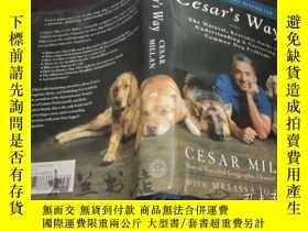二手書博民逛書店原版英法德意等外文罕見Cesar s Way: The Natu