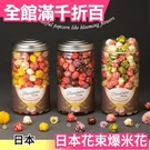 日本超人氣 Hanataba 花束爆米花 綜合爆米花 抹茶牛奶草莓巧克力地瓜 母親節禮物 【小福部屋】