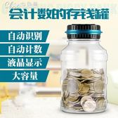 超大號硬幣存錢罐創意防摔儲蓄罐韓國創意女孩成人六一兒童節禮物「Chic七色堇」