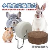 金德恩 美國製造 LIXIT寵物用品礦輪鹽輪啃咬石