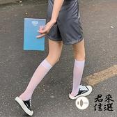2/3雙裝 小腿襪薄款透明潮長襪子女中筒襪半筒絲襪【君來佳選】