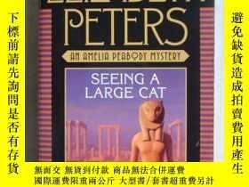 二手書博民逛書店Seeing罕見a Large Cat【英文原版】Y146810