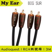 Audioquest BIG SUR RCA 訊號線 RCA轉RCA 3M | My Ear耳機專門店
