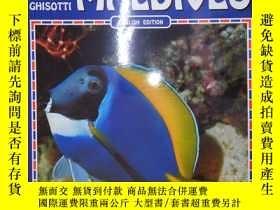 二手書博民逛書店Fish罕見of the Maldives(詳見圖)Y6583