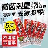 【AIMEDIA艾美迪雅】強力去黴凝膠80g-日本製 5入優惠組