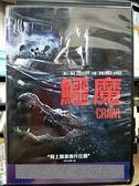 挖寶二手片-0B02-377-正版DVD-電影【鱷魔】-凱亞絲柯黛蘭莉歐 巴里佩珀(直購價)