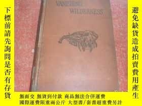 二手書博民逛書店VANISHING罕見WILDERNESS消失的荒野(英文原版)